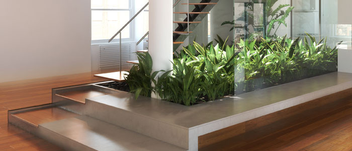 Building Lobby | Plant Service